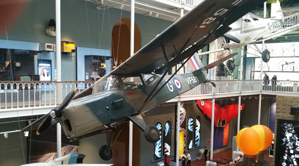 blog-beagle-auster-terrier-national-museum-of-scotland-20170208_112925-1