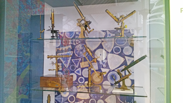 blog-microscopes-national-museum-of-scotland-20170208_114445